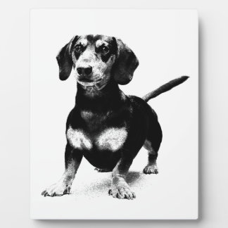 Dachshund Ink Drawing Display Plaque