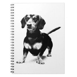 Dachshund Ink Drawing Note Books