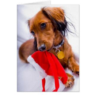 Dachshund largo rojo dulce del pelo tarjeta de felicitación