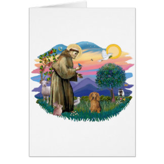 Dachshund (long haired sable) card
