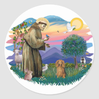 Dachshund (long haired sable) classic round sticker