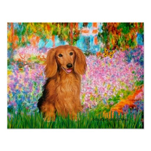 Dachshund (long haired sable) - Garden Posters