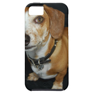 Dachshund Love iPhone SE/5/5s Case