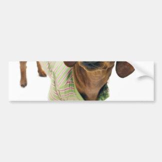 Dachshund - merry christmas - cute dog bumper sticker