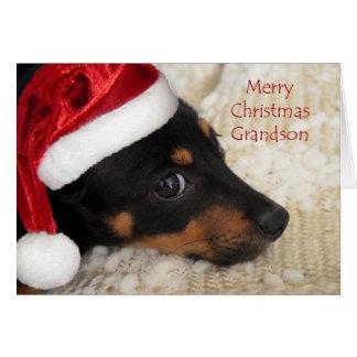 Dachshund Merry Christmas Grandson Card