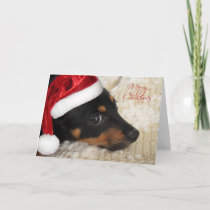 Dachshund Merry Christmas Holiday Card