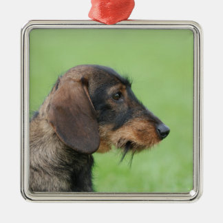 Dachshund Metal Ornament