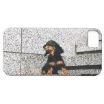 Dachshund miniatura 4 funda para iPhone SE/5/5s