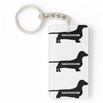 dachshund name silo keychain