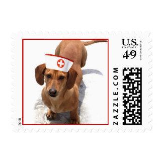Dachshund nurse stamps