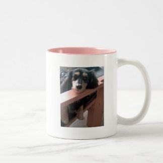 Dachshund of black cream Two-Tone coffee mug