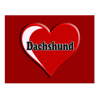 Dachshund on Heart for dog lovers Postcards