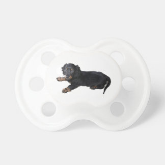 Dachshund/perrito negros de cocker spaniel chupetes