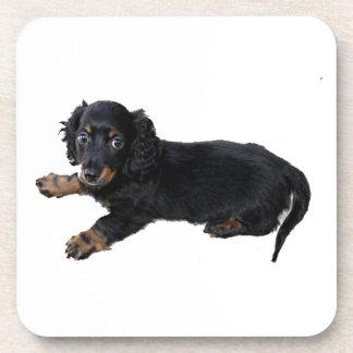 Dachshund/perrito negros de cocker spaniel posavasos de bebidas
