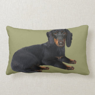 Dachshund Pillows