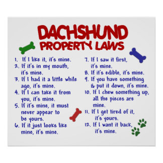 DACHSHUND PL2 POSTERS