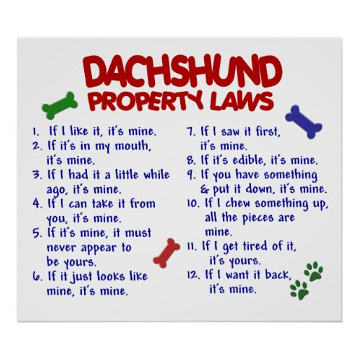 DACHSHUND PL2 POSTER