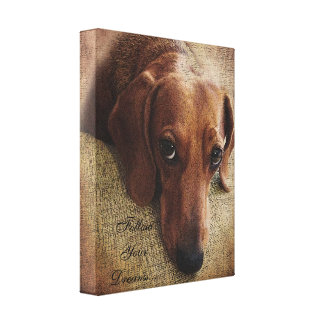 Dachshund Portrait Canvas Wrap