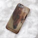 Dachshund Portrait iPhone 6 case