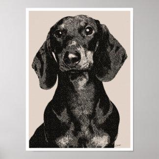 Dachshund Portrait Vintage Inspired Engraving Poster