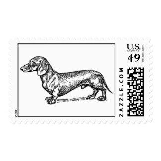 dachshund postage stamps