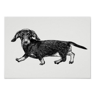 Dachshund Wall Art dachshund art & framed artwork | zazzle