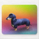 Dachshund principesco en un arco iris Mousepad Tapetes De Ratón