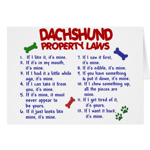 Dachshund Property Laws 2 Cards