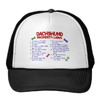 Dachshund Property Laws 2 Trucker Hat