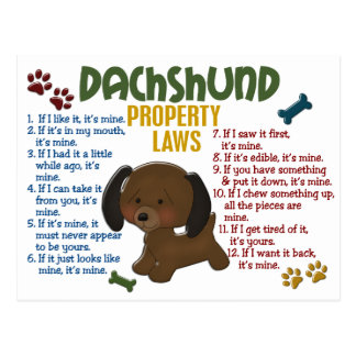 Dachshund Property Laws 4 Postcards