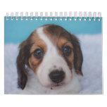 Dachshund Puppies Calendar