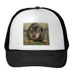 Dachshund  Puppy (Black/Grey) on the Lake Trucker Hat