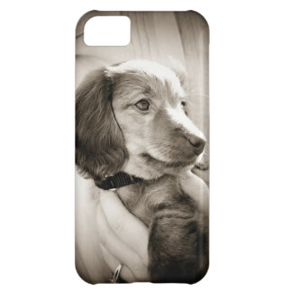Dachshund puppy case iPhone 5C case
