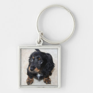 Dachshund puppy dog cute beautiful photo, gift keychain