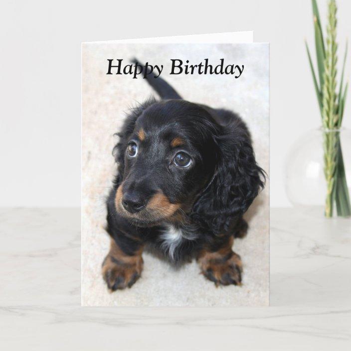 Cute Dogs Dachshund Hand Drawn Dog Art Card Birthday Card Derp Cute Card Party Dog Greeting Card Line Art Fun Party
