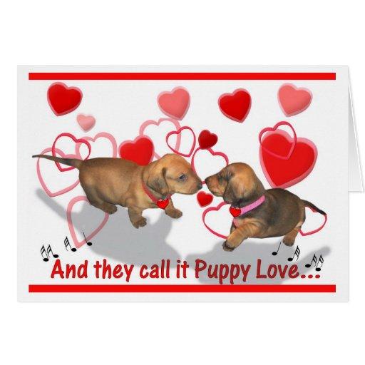 Dachshund Puppy Love Cards