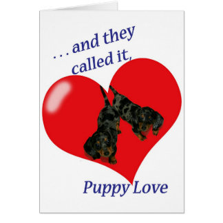 Dachshund Puppy Love Valentine's Day Card