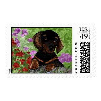 Dachshund Puppy Stamp