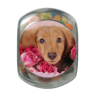 Dachshund Puppy Surrounded by Roses Glass Jar