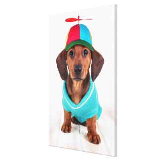 Dachshund Puppy Wearing Propeller Hat Canvas Print