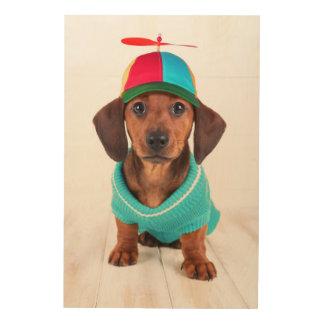 Dachshund Puppy Wearing Propeller Hat Wood Print