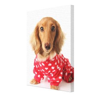 Dachshund Puppy Wearing Valentine's Outfit Canvas Print