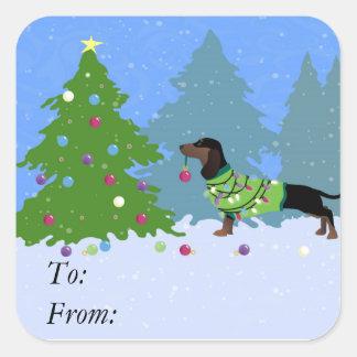 Dachshund que adorna el árbol de navidad en bosque pegatina cuadrada