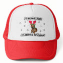 Dachshund Reindeer Hat hat
