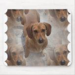 Dachshund Rescue Mouse Pad