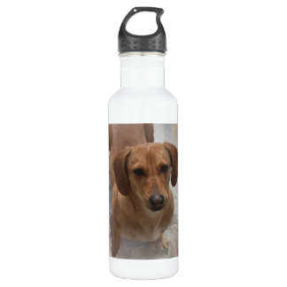 Dachshund Rescue Pet Bottle 24oz Water Bottle