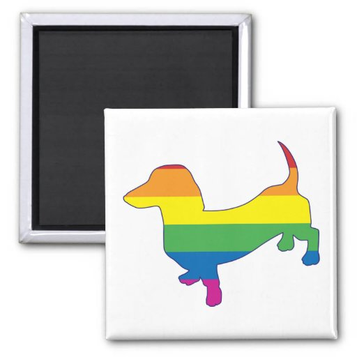 Dachshund/salchicha de Frankfurt del orgullo gay Imán Cuadrado