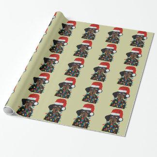 Dachshund Santa enredado en luces de navidad
