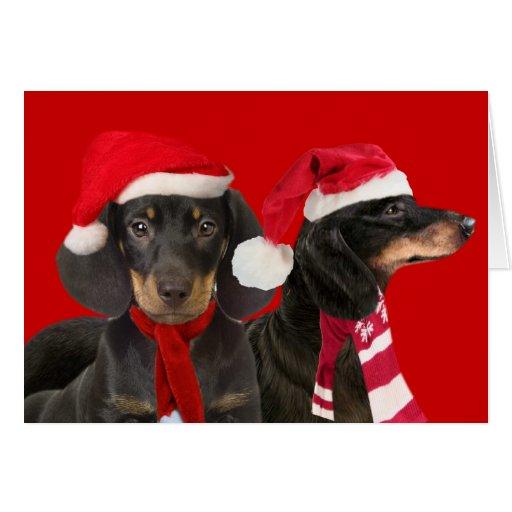 Dachshund Santa Paw Greeting Cards