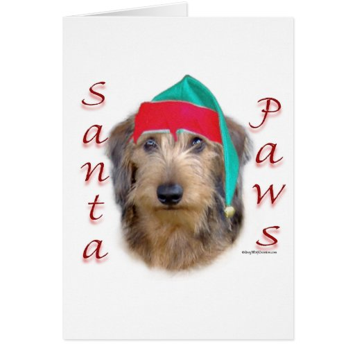 Dachshund Santa Paws Cards